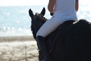 Paardrijden Bergen aan Zee